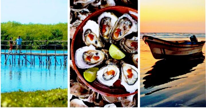 Exuberante e histórica la costa norte de Riviera Nayarit,