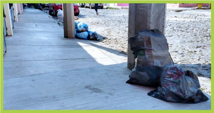 Colonias de Tepic sin recolección de basura: Alcalde se hace de la vista gorda